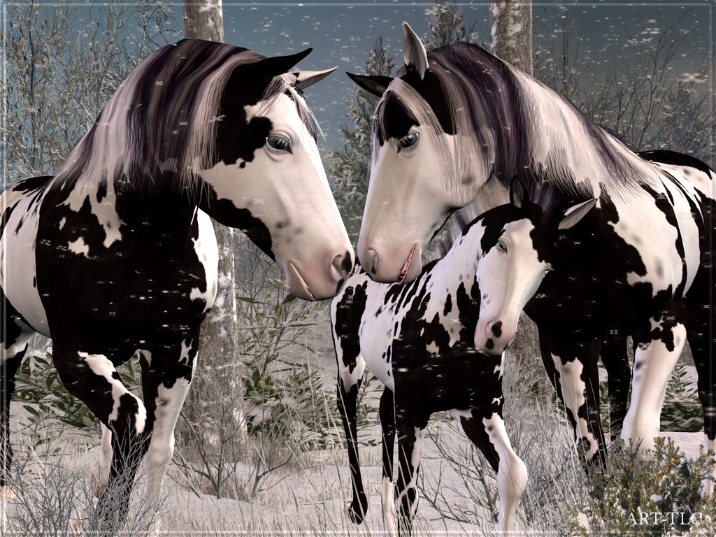 Free wallpapers by art tlc wallpapers tlc horses on snowy free wallpapers by art tlc wallpapers tlc horses on snowy mountain wallpaper 3 voltagebd Choice Image
